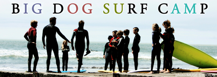 big dog surf camp - banner